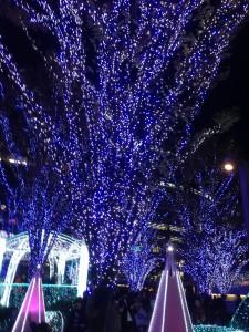 博多駅クリスマスイルミネーション